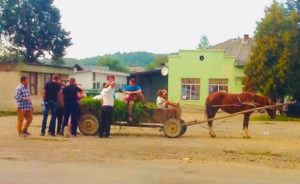 Horse riding shopping Ukraine